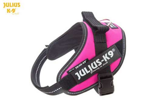 Julius-K9 IDC Powerharness Dark Pink Size: Mini-Mini