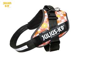 Julius-K9 IDC Powerharness Pink with Flowers Size: 3