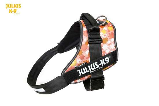 Julius-K9 IDC Powerharness Pink with Flowers Size: 4
