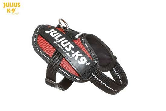 Julius-K9 IDC Powerharness Red-Brown Size: Baby 2