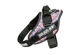 Julius-K9 IDC Powerharness Union Jack, Size: 2