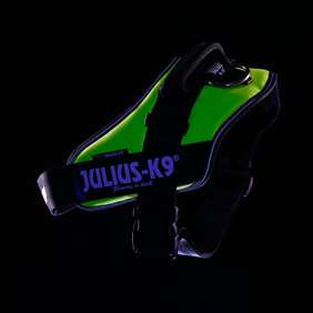 Picture of Julius-K9 IDC® Powerharness, UV Neon, Size 1