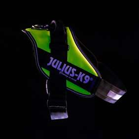 Picture of Julius-K9 IDC® Powerharness, UV Neon, Size 3