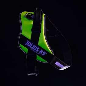 Picture of Julius-K9 IDC® Powerharness, UV Neon, Size 4