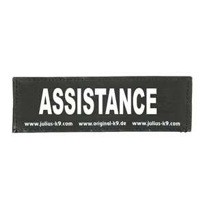 Picture of ASSISTANCE (162LR-K-43621)