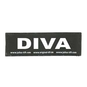 Picture of DIVA (162LR-K-35602)