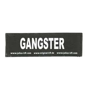 Picture of GANGSTER (162LR-K-35947)