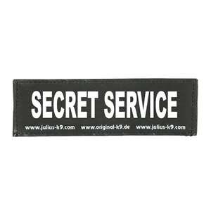 Picture of SECRET SERVICE (162LR-K-30461)