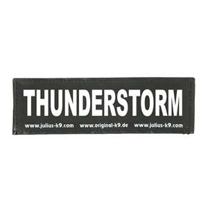 Picture of THUNDERSTORM (162LR-K-30928)