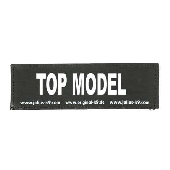 Picture of TOP MODEL (162LR-K-30942)