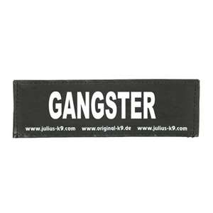Picture of GANGSTER (162LR-G-32311)