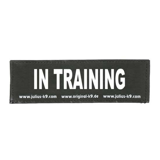 Picture of IN TRAINING (162LR-G-42457)