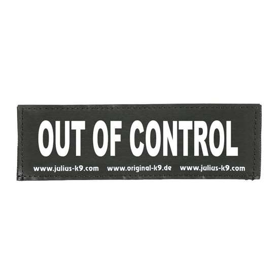 Picture of OUT OF CONTROL (162LR-G-33486)