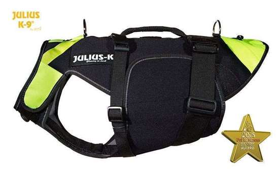 multifunctional harness