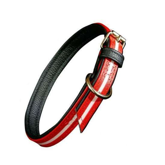 IDC Lumino Collar - 45cm, red