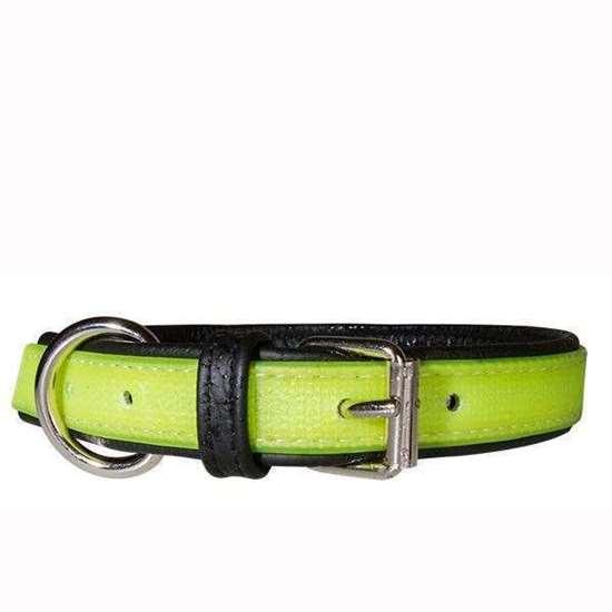 IDC Lumino Collar - yellow, 60cm