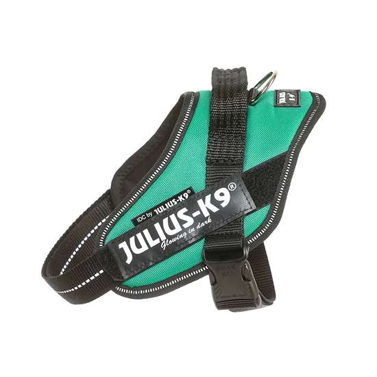 Picture of Julius-K9 IDC® Powerharness, Grass Green, Size Mini-Mini