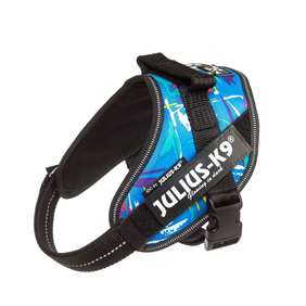 Picture of Julius-K9 IDC® Powerharness, Kid Canis, Size Mini