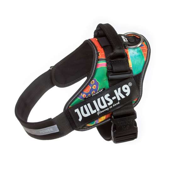 Picture of Julius-K9 IDC® Powerharness, Reggae Canis, Size 1