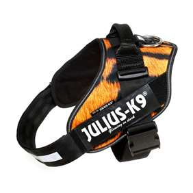 Picture of Julius-K9 IDC® Powerharness, Tiger, Size 1