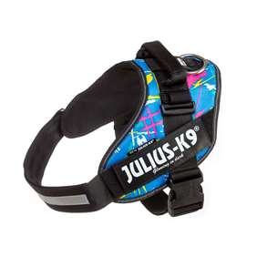 Picture of Julius-K9 IDC® Powerharness, Kid Canis,  Size 2