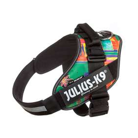 Picture of Julius-K9 IDC® Powerharness, Reggae Canis,  Size 2