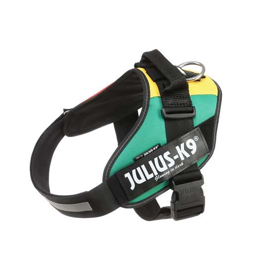 Picture of Julius-K9 IDC® Powerharness, Africa Style,  Size 2