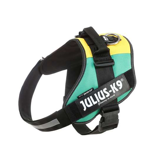 Picture of Julius-K9 IDC® Powerharness, Africa Style, Size 3