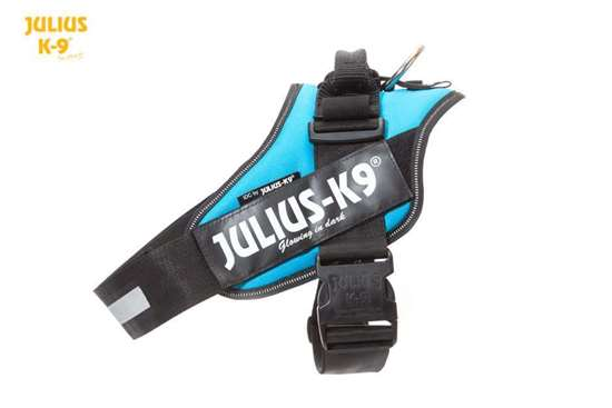 Picture of Julius-K9 IDC® Powerharness, Aquamarine, Size 1