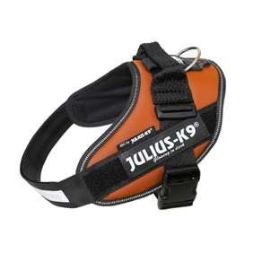 Picture of Kupferorange, Size 0 Julius-K9 IDC® Powerharness