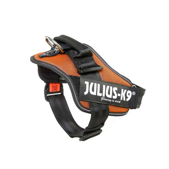 Picture of Kupferorange, Size 1 Julius-K9 IDC® Powerharness