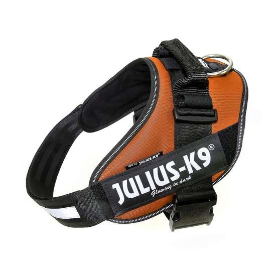 Picture of Kupferorange, Size 2 Julius-K9 IDC® Powerharness