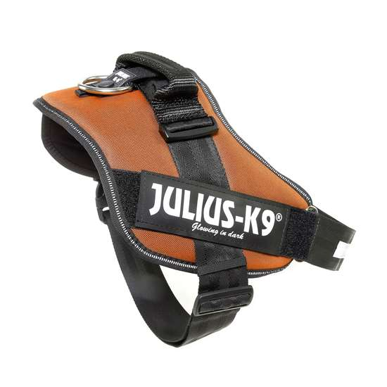 Picture of Kupferorange, Size 3 Julius-K9 IDC® Powerharness