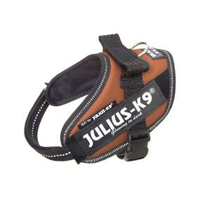 Picture of Kupferorange, Mini-Mini Julius-K9 IDC® Powerharness