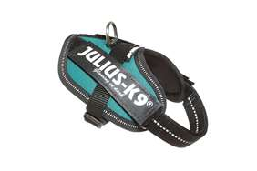 Picture of Petrol Green, Baby2 Julius-K9 IDC® Powerharness