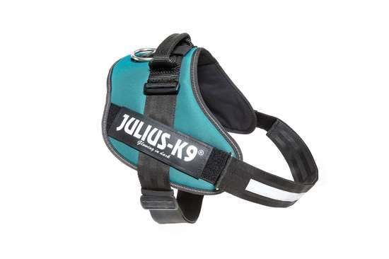 Picture of Petrol Green, Size 3 Julius-K9 IDC® Powerharness