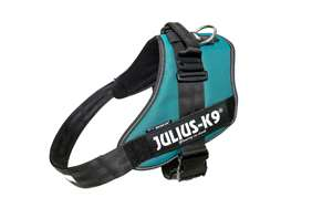 Picture of Petrol Green, Size 4 Julius-K9 IDC® Powerharness
