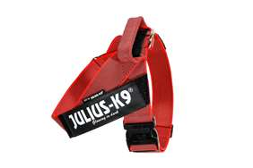 Picture of Red, Size 3 Color & Gray IDC® Belt Harness