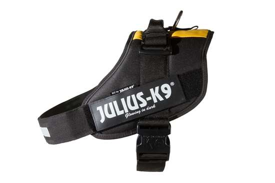 Picture of Belgian flag, Size 3 Julius-K9 IDC® Powerharness