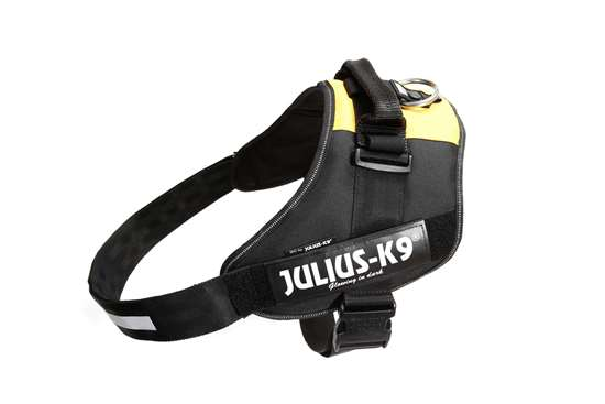 Picture of Belgian flag, Size 4 Julius-K9 IDC® Powerharness