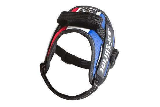 Picture of French flag, Mini Julius-K9 IDC® Powerharness