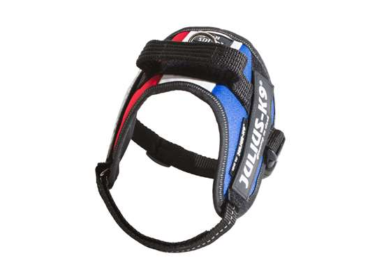 Picture of French flag, Mini-Mini Julius-K9 IDC® Powerharness