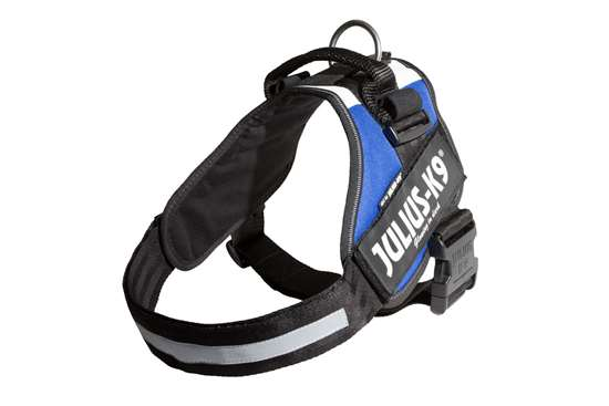 Picture of French flag, Size 3 Julius-K9 IDC® Powerharness