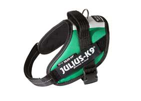 Picture of Italian flag, Mini Julius-K9 IDC® Powerharness