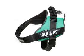 Picture of Italian flag, Size 4 Julius-K9 IDC® Powerharness