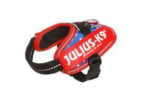 Picture of USA flag, Baby1 Julius-K9 IDC® Powerharness