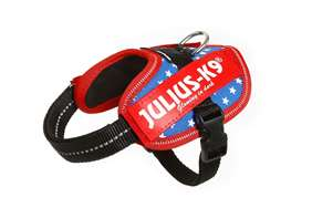 Picture of USA flag, Baby2 Julius-K9 IDC® Powerharness