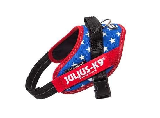 Picture of USA flag, Mini-Mini Julius-K9 IDC® Powerharness