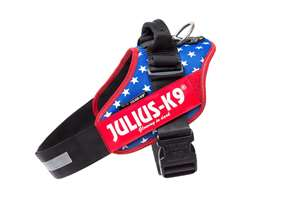 Picture of USA flag, Size 4 Julius-K9 IDC® Powerharness