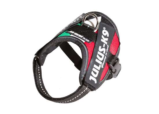 Picture of Hungarian flag, Baby2 Julius-K9 IDC® Powerharness